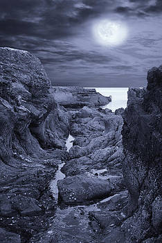 Jane McIlroy - Moonlight over Rugged Seaside Rocks