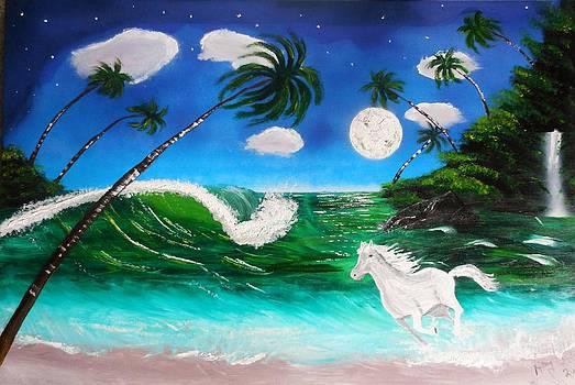 Moonlight run by Amy LeVine