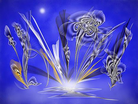 Moonlight by Saina Art