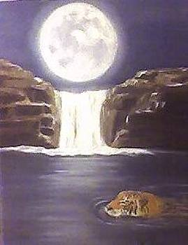 Moonlight Swim  by Patricia Olson