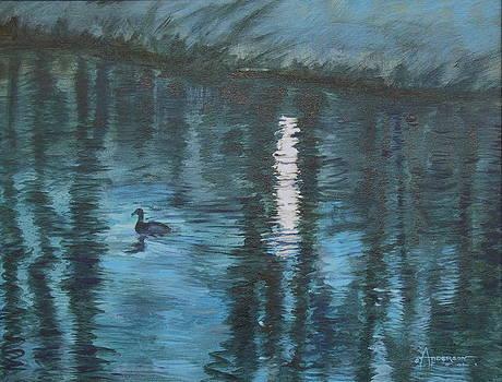 Moonlight Swim by Sherri Anderson