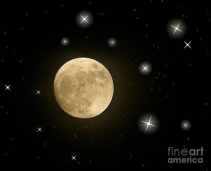 Moonlight by Vera  Laake