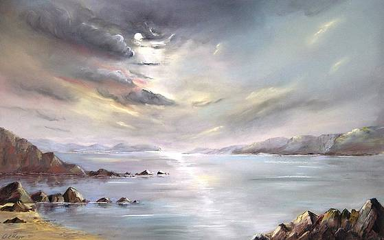 Moonlit Bay by Anne Kerr