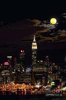 Regina Geoghan - Moonlit Manhattan