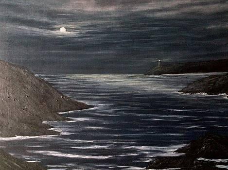 Moonlit ocean by Paul Carter