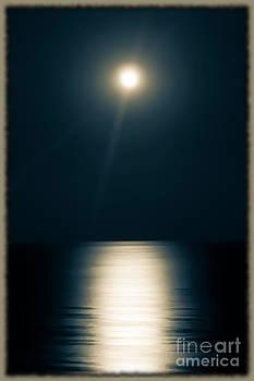Sophie Vigneault - Moonlit Ocean