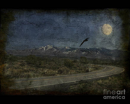 Moonlit road by Jim Wright