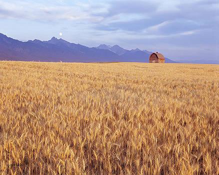 Scott Wheeler - Moonrise Over Montana