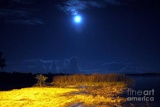 George D Gordon III - Moonrise Over Rochelle - Landscape