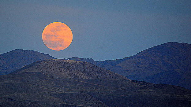 Moonrise Over the Desert by AJ  Schibig