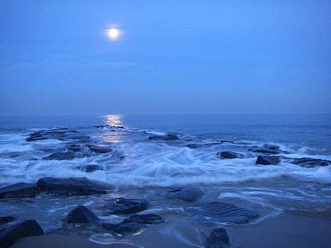 Moonrise Over The Whale Rock by Anastasia Pleasant