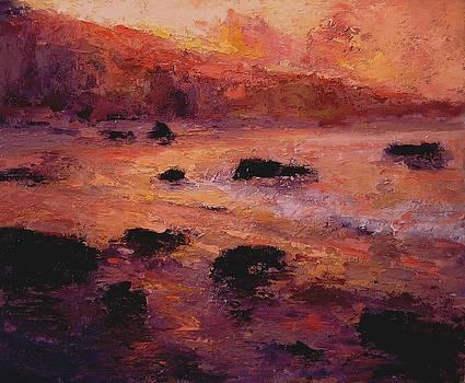 Moonstone Beach at sunrise by R W Goetting