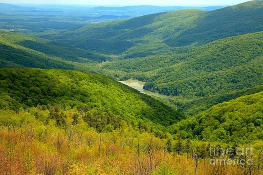 Adam Jewell - Moormans River Overlook