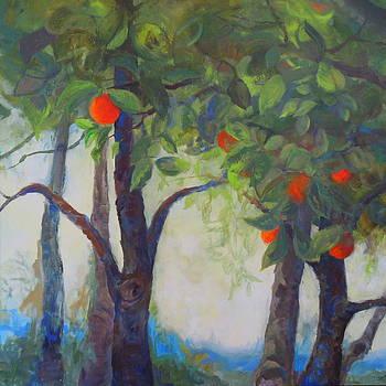 More California Sunshine by Terri Messinger