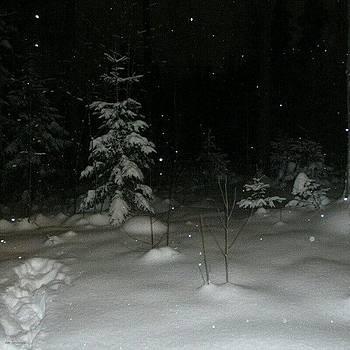 Eve Tamminen - More Snow