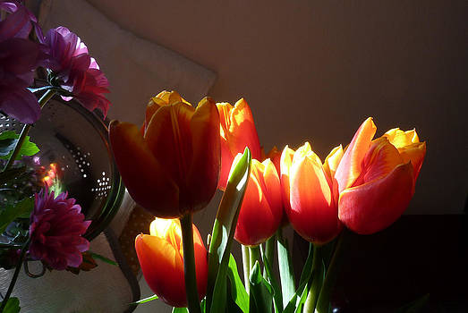 Baato   - more tulips