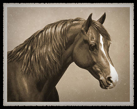 Crista Forest - Morgan Horse Old Photo FX