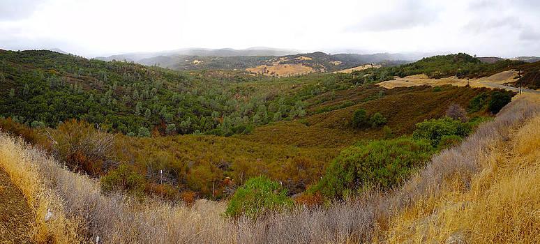 Morgan Valley Hills 1 Lower Lake CA by G Matthew Laughton