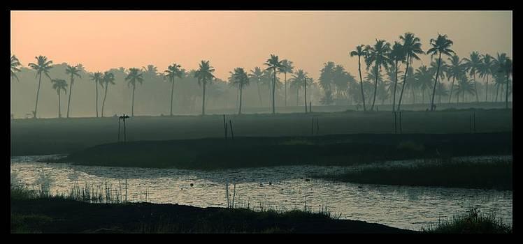 Morning At Backwaters by Backyard Civilization