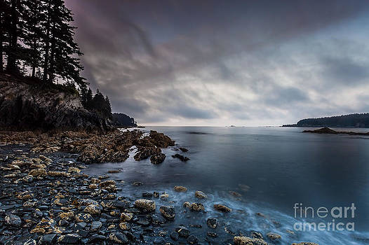 Morning at Mills Bay by Steven Reed
