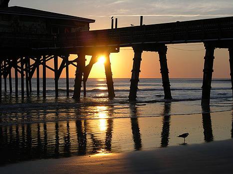 Morning at Sun Glow Pier 2-14-10 by Julianne Felton
