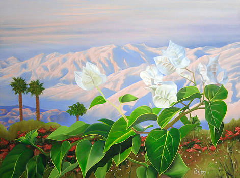 Morning by Bijan Masoumpanah