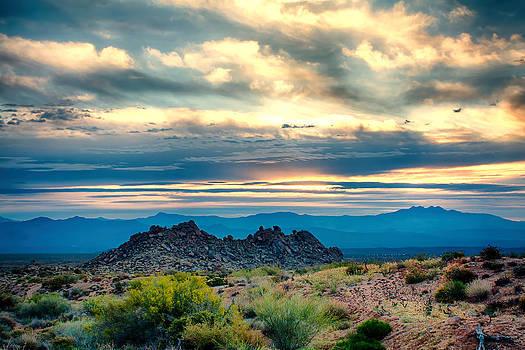 Morning Desert Glow by Fred Larson