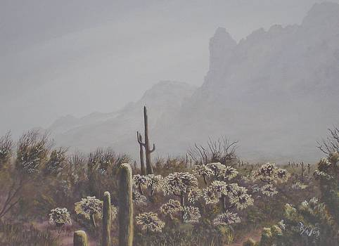 Morning Desert Haze by Ray Nutaitis