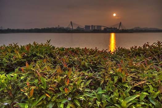 Morning Dew by Mario Legaspi