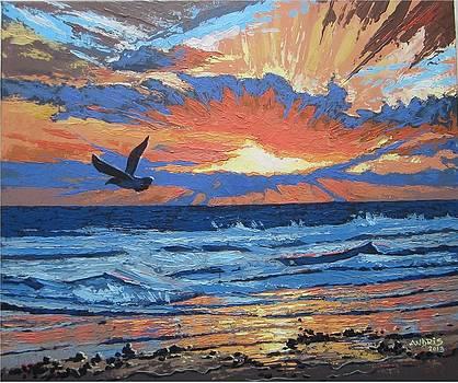 Morning Flight by Andrei Attila Mezei