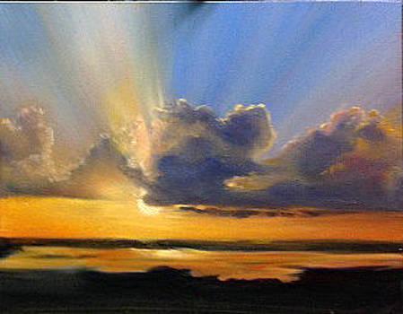 Morning Glory by Lori Ippolito