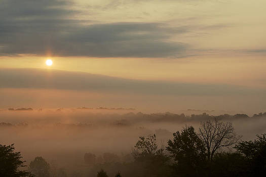 Morning Glory - sunrise through the fog by Jane Eleanor Nicholas