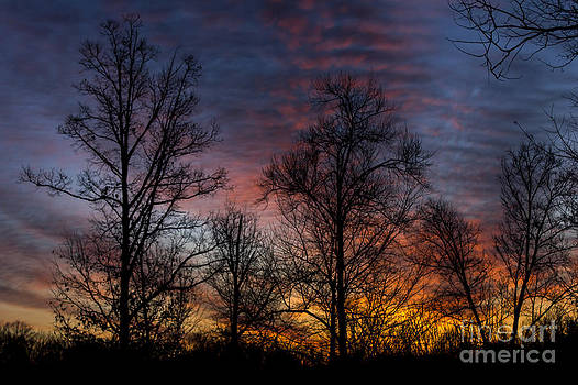 Morning Glow by Debra K Roberts