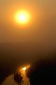 Morning Haze by Sarah Boyd