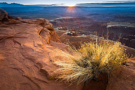 Morning Light at Grand View Point by Mike  Walker