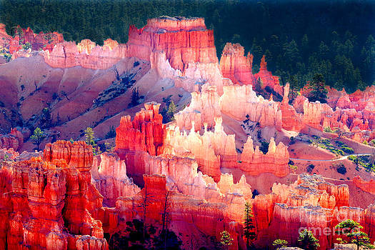 Douglas Taylor - MORNING LIGHT - BRYCE CANYON