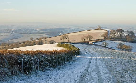 Morning light on Raddon Hill by Pete Hemington
