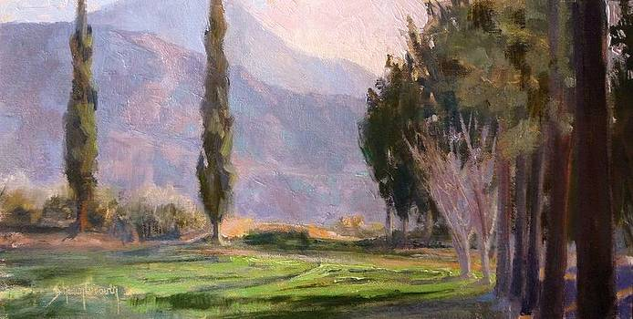 Morning Light Through the Trees by Sharon Weaver