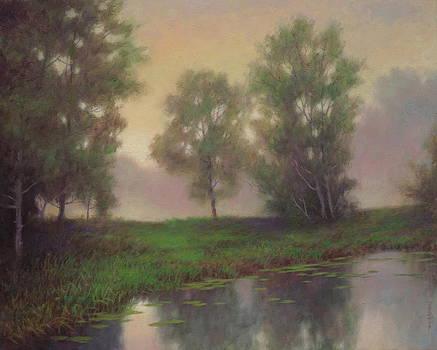 Morning Mist by Barry DeBaun