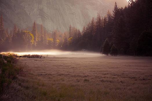 Morning Mist by Howard Weitzel
