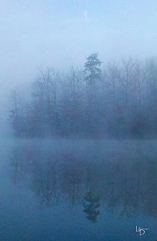 Morning Mist by L and D Design Photography
