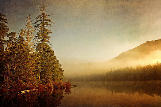 Peggy Collins - Morning Mist on the Lake