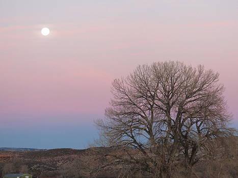 Morning Moon by Karen Mary Castranova