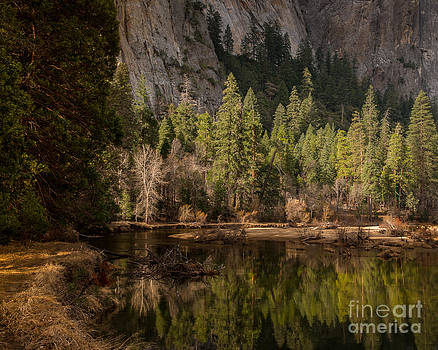 Terry Garvin - Morning on the Merced River Yosemite