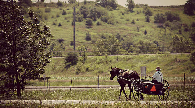 Rebecca Frank - Morning Ride