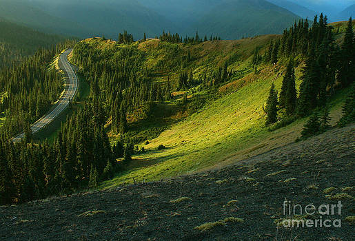 Morning Road by Denise Lilly