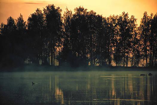 Morning Scuba Moment by Matti Ollikainen