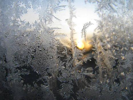 Alfred Ng - morning snowflakes