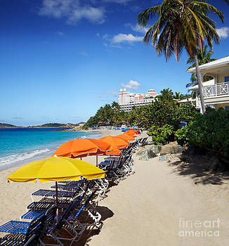 Jo Ann Snover - Morning Star Beach umbrellas