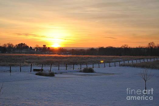 Jeffrey Randolph - Morning Sun